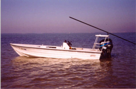 This is the perfect boat for tarpon flyfishing and tarpon flyfishing at the famous Homosassa Flats. Homossas fly fishing is all about flyfishing for tarpon, big tarpon. Sight fishing from a flats boat is one of the great experiences in saltwater fishing. Poling the boat quietly from a raised platform, the guide can spot fish otherwise unseen. He then can guide the angler to seeing and casting to the sportfish. In addition to our flats fishing charters, our guide is available for sightseeing, shelling, birdwatching and eco-tour cruises. Just one hour away from Disney World and the Orlando attractions, the Gulf Coast is a world apart.